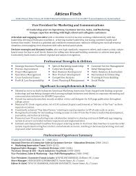 professional resume exles professional resume sles by julie walraven cmrw