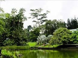 Atlanta Botanical Gardens Groupon Botanic Garden I Botanic Garden Review