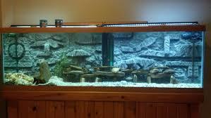 decor 3d aquarium decor 3d aquarium with decor 3d aquarium pros