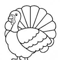 coloring page turkey drawing coloring pages
