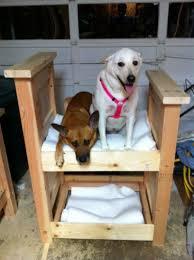 Bunk Bed For Dogs Diy Dog Bunk Bed Petdiys Com
