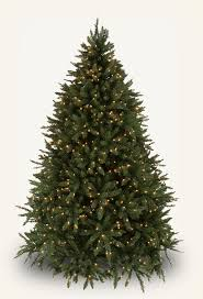 best 25 douglas fir christmas tree ideas on pinterest douglas