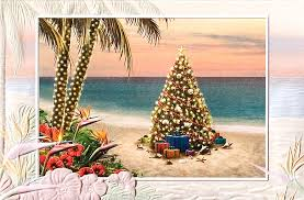 tropical christmas cards tropical photo christmas cards merry christmas and happy new year 2018