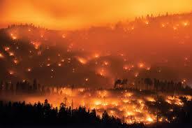 Wildfire Deaths Per Year by How Science Is Fighting Wilder Wildfires Than Ever Before