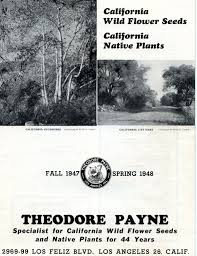 california native plants for sale from the archives catalogs theodore payne foundation