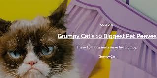 grumpy cat u0027s top ten pet peeves life with cats
