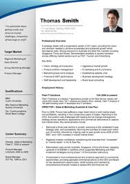 Sample Professional Resume Templates by Cv Sample Professional