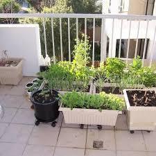 the stylish balcony garden ideas vegetables ideas november 25