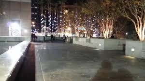 trees with raining lights d