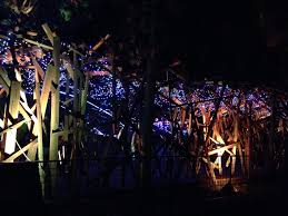 Zoo Lights Discount Tickets The Joyous Living Review La Zoo Lights
