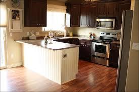 Kitchen Cabinet Paint Colors Ideas by Kitchen Kitchen Cabinet Color Ideas How To Repaint Kitchen