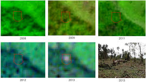 forests free full text combining satellite data and community