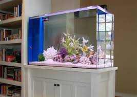 Fish Tank Desk by Fish Tank U2013 Decor U0026 Hair Blog