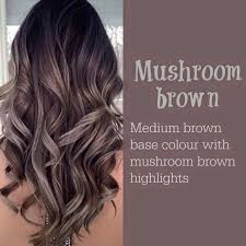 mushroom brown higlight hair color ideas 2017 haircut