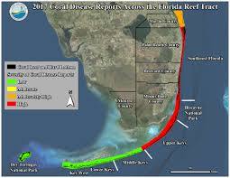Map Of Coral Reefs Fco Coral Reef Disease Map 2017 Updated V2 Kb 1 9 18 Florida