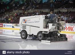 zamboni ice resurfacing an ice rink stock photo royalty free