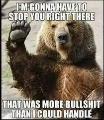 Meme Bear - bear stop that is more bullshit than i can handle memes