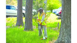 Commercial Landscaping Bids by Commercial Landscape Maintenance Bidding Tips Green Industry Pros
