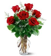 green roses flower meanings by their color variety and numbers