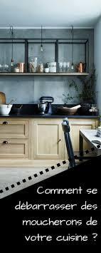 chasser les moucherons dans la cuisine vous avez des moucherons dans votre cuisine voici la meilleure