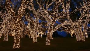 christmas lights in college station texas christmas lights college station christmas decorating