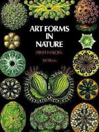 pattern art famous ian alexander s reviews and recommendations of books on patterns in