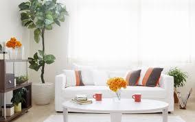 captivating interior pure white scheme decorating bedroom design