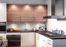 Metal Kitchen Cabinets Ikea Abound Ikea Stainless Kitchen Cabinets Tags Metal Kitchen