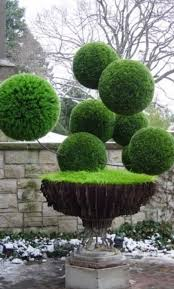 Topiaries Brisbane - 351 best topiary images on pinterest topiaries topiary garden