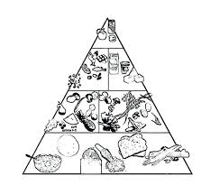 awesome food pyramid coloring page or holidays food pyramid and