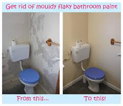 Anti Mould Spray For Painted Walls - attitude bathroom mold u0026 mildew cleaner bathroom trends 2017 2018
