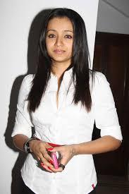 trisha hair in vtv movementmovie trisha latest stills from vtv success meet in chennai