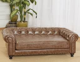 Leather Sofa And Dogs Leather Sofa For Dogs Teachfamilies Org