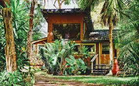download wallpaper 3840x2400 house palm tree plants sunlight