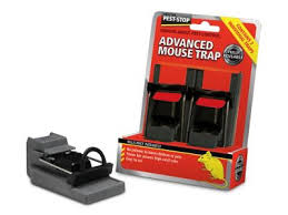 buy proctor advanced mousetrap pack of 2 from our pest