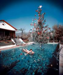 pool place trees part 43 dr suess like tree