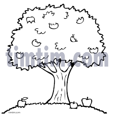 free drawing of an apple tree bw from the category climate