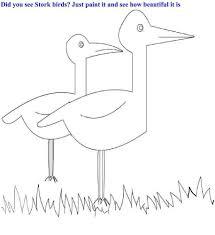 stork birds coloring printable kids