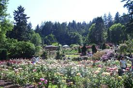 washington park portland attractions review 10best experts and