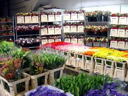 wholesale flowers wholesale flowers in liverpool and west liverpool wholesale