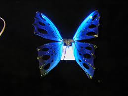 amazing dark blue butterfly color wallpaper wallpaper me