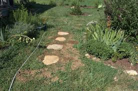 Backyard Stepping Stones by Setting Inlaid Stepping Stones Growing The Home Garden