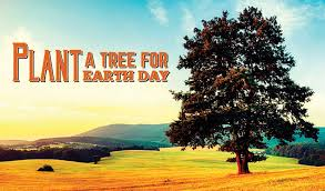 plant a tree for earth day the locator magazine april 2016