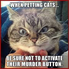 Murder Meme - when petting cats be sure not to activate their murder button