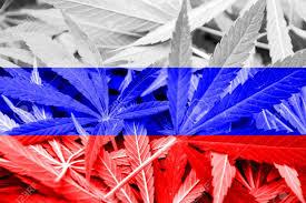 Colorado Flag Marijuana Russia Flag On Cannabis Background Drug Policy Legalization