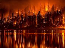 Largest Wildfire In Alberta History by Fort Mcmurray Is On Fire The Westcoast Reader