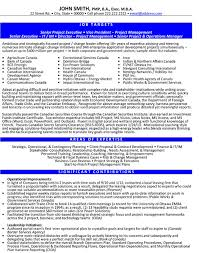 Sample Sales Executive Resume by Executive Resume Sales Executive Resume Sales Executive Resume