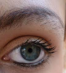 tatouage sourcils poil par poil brown bar benefit un deux un deux test test le blog côté moi