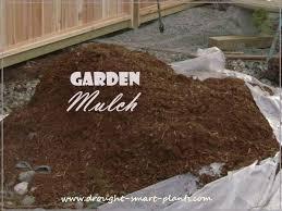 Garden Mulch Types - best 25 garden mulch ideas on pinterest gardening growing