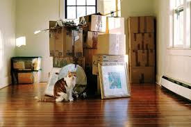 hiring movers things not to do when hiring movers to move your home